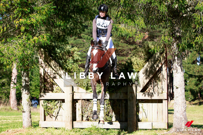 Jessica Woods rides Just de Manzana into fourth position during the NRM CIC3* Cross Country at the 2017 NZL-NRM National Three Day Event Championships. National Equestrian Center, Taupo. Saturday 13 May. Copyright Photo: Libby Law Photography