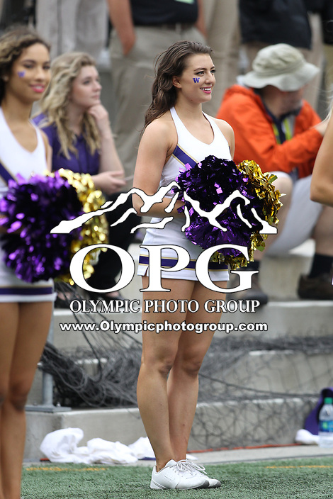 SEATTLE, WA - SEPTEMBER 9:  Washington cheerleader Tessa Locknane entertained fans during the college football game between the Washington Huskies and the Montana Grizzlies on September 09, 2017 at Husky Stadium in Seattle, WA. Washington won 63-7 over Montana.