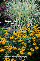63821-03218 Black-eyed Susans & Varigated Japanese Silver Grass    IL
