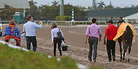 HALLANDALE BEACH, FL - MARCH 31:  #8 Audible and training team head back to the barn after winning the Xpressbet Florida Derby GI Stakes. Scenes from Florida Derby Day at Gulfstream Park on March 31, 2018 in Hallandale Beach, Florida. (Photo by Liz Lamont/Eclipse Sportswire/Getty Images)