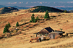 An old abondoned homestead near Vindicator Mine, near the town of Victor, Colorado.