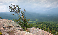 View from Mt. Von Hoevenberg, Adirondack Mountains, New York