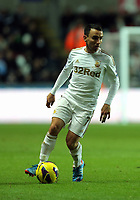 Sunday, 28 November 2012<br /> Pictured: Leon Britton.<br /> Re: Barclays Premier League, Swansea City FC v West Bromwich Albion at the Liberty Stadium, south Wales.
