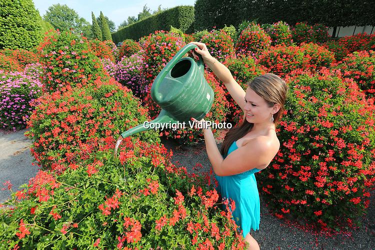 Foto: VidiPhoto<br /> <br /> LEERSUM - De 23-jarige Marieke de Jong van Oase-Lease uit Leersum voorziet woensdag de tientallen geranium-piramides van de bloemenspecialist van een flinke slok water voordat ze vertrekken naar de diverse stadscentra in Nederland. De enorme bloembakken zijn niet aan te slepen op dit moment, ondanks het zomerreces. De fleurige gevelbakken, hanging baskets en bloemen-piramides in winkelcentra blijken volgens onderzoek het koopgedrag van het publiek te bevorderen en vandalisme te verminderen. Met als gevolg dat Oase-Lease op dit moment overspoeld wordt met bestellingen. En dat is tijdens een vakantieperiode als ook veel gemeenten met reces zijn, opmerkelijk.