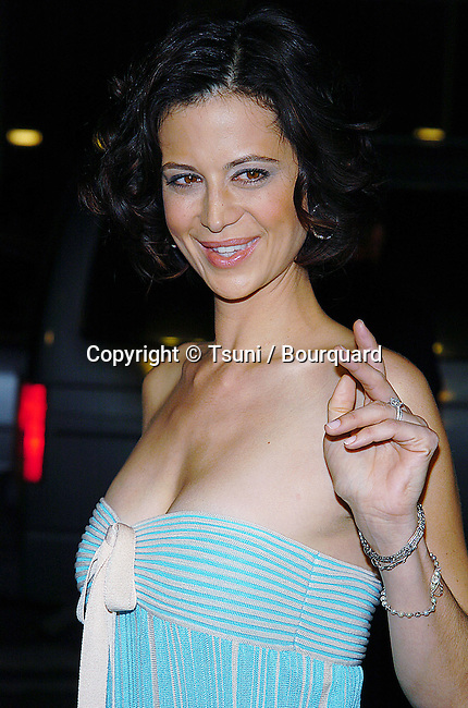 Catherine Bell arriving at Walking Tall Premiere at the Chinese Theatre in Los Angeles. March 29, 2004.