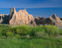 SDBD_009 - USA, South Dakota, Badlands National Park, Yellow sweet clover blooms near soft, eroded rock that has formed a window, near Castle Trail, North Unit.