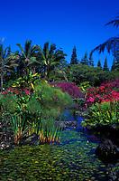 Nani Mau Gardens, Hilo, Big Island