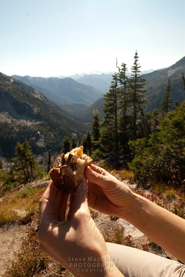Maple Pass Trail, North Cascades National Park, WA.