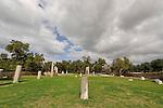 Israel, the Coastal Plain. Remains of the pillars from the Roman basilica