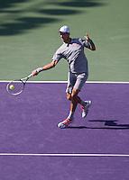 Djokovic Forehand