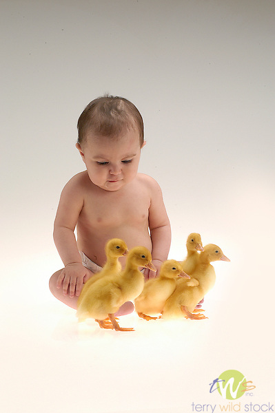 Baby with chicks