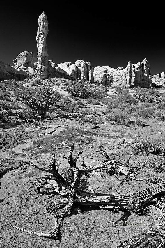 Desert Wall, Arches National Park, Utah.