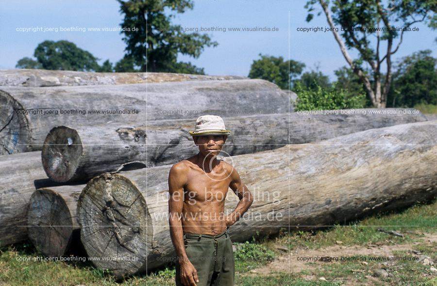 CAMBODIA, Mekong region, Stung Treng, logging of rainforest