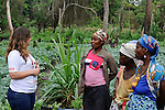 ANGOLA Malanje , training and support of small scale farmers , cultivation of vegetables like cabbage for additional income generation /ANGOLA Malanje , Beratung und Foerderung von Kleinbauern, Gemueseanbau, Feld mit Kohl