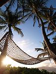 OLYMPUS DIGITAL CAMERA Scenics photos from around Maui Hawaii,Honolua bay,haelakala crater,wailea beach,Hookipa ,north shore maui,shugar cane,rainbow , sunsets,molokini, many beautiful photos from around the island enjoy.