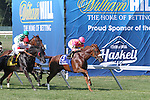 2014_07_27 William Hill Haskell Signage