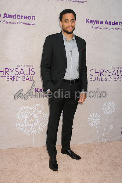 6 June 2015 - Los Angeles, California - Michael Ealy. 14th Annual Chrysalis Butterfly Ball held at a Private Residence. Photo Credit: Byron Purvis/AdMedia
