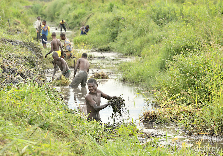 Residents of Kamina, in the Democratic Republic of the Congo, clean an irrigation canal as part of an effort to destroy breeding grounds of malaria-carrying mosquitoes. The project, sponsored by the United Methodist Church, is part of a larger effort to eradicate the disease, which kills more than a million people a year, most of them in Africa.