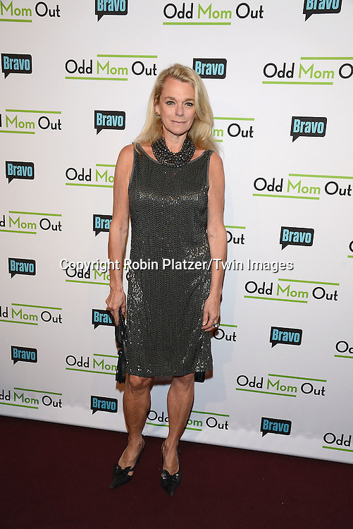Debbie Bancroft attends the &quot;Odd Mom Out&quot; Screening, which is Bravo's first scripted half-hour comedy from Jill Kargman,  on June 3, 2015 at Florence Gould Hall in New York City, New York, USA.<br /> <br /> photo by Robin Platzer/Twin Images<br />  <br /> phone number 212-935-0770