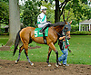 Parent's Honor before The Stonewall Farm Ocala Hockessin Stakes at Delaware Park on 7/28/12