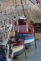France, Côtes-d'Armor (22), Côte de Penthièvre, Erquy, le port de pêche // France, Cotes d'Armor, Cote de Penthièvre, Erquy, the harbour