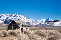 Derelict log homestead, jagged mountains, central Idaho.