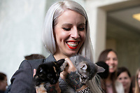 Hannah Shaw, known as the Kitten Lady, holds a kitten in the Rayburn House Office Building on Capitol Hill in Washington, DC during an event in support of the 'Kitten Act' which aims to stop testing by the United States Department of Agriculture on Kittens in Washington, DC on June 7, 2018. <br /> CAP/MPI/RS<br /> &copy;RS/MPI/Capital Pictures