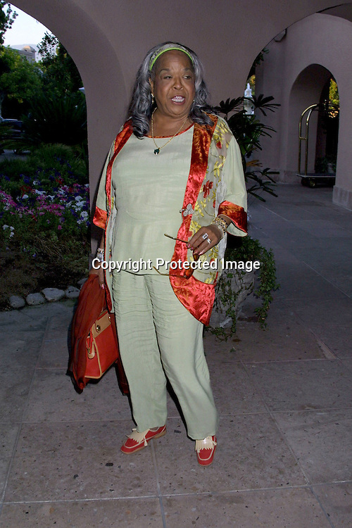 ©2002 KATHY HUTCHINS / HUTCHINS PHOTO.CBS PRESS PARTY  7/16/02.PASADENA, CA..