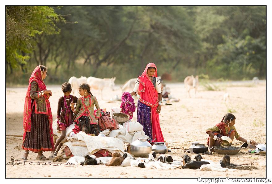 Inde<br /> D&eacute;sert du Rajasthan, jeunes berg&egrave;res.