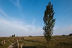 Venezia - Il Lido. L'Oasi di S. Nicolò, all'estremità settentrionale del Lido di Venezia, è un'area litoranea, lunga circa un chilometro e mezzo, che si estende dalla Diga Sud della bocca di porto di Lido fino agli stabilimenti balneari; comprende una zona a pineta, che confina con l'aeroporto Nicelli, un'area dunale e la spiaggia ad essa antistante. L'Oasi prende il nome dalla vicina chiesa di S. Nicolò, fondata nel secolo XI.