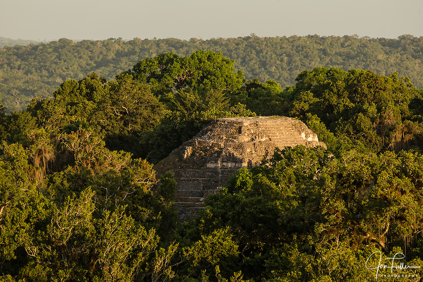 View at sunset of the Lost World Pyramid  from Temple IV in the Mayan archeological site of Tikal National Park, Guatemala.    A UNESCO World Heritage site since 1979.