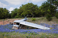 Wildflowers line the roadsides in the Texas Hill Country near this old airplane just outside of Fredericksburg Texas.   Bluebonnets, the official Texas state flower, blanket large portions of the state in early spring. Their peak blooming season is in late March and early April. Bluebonnets depend on abundant winter rains and warm spring weather.