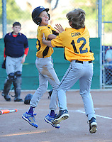 2016 PLEASANTON LITTLE LEAGUE ACTION
