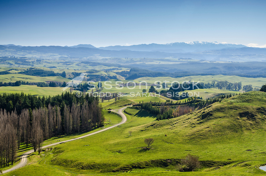 Green paddocks Kaweka range between Napier and Taihape. Hawkes Bay North Island New Zealand.