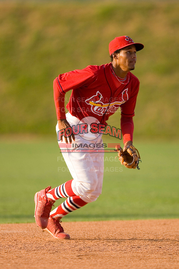 Shortstop Yunier Castillo #7 of the Johnson City Cardinals on defense versus the Burlington Royals at Howard Johnson Stadium June 27, 2009 in Johnson City, Tennessee. (Photo by Brian Westerholt / Four Seam Images)