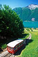 Schweiz, Kanton Uri, Treib: Die Treib-Seelisberg Bahn bringt Sie vom Aussichtsplateau Seelisberg hinunter zur Schiffsanlegestelle Treib und retour | Switzerland, Canton Uri, Treib: Treib-Seelisberg train