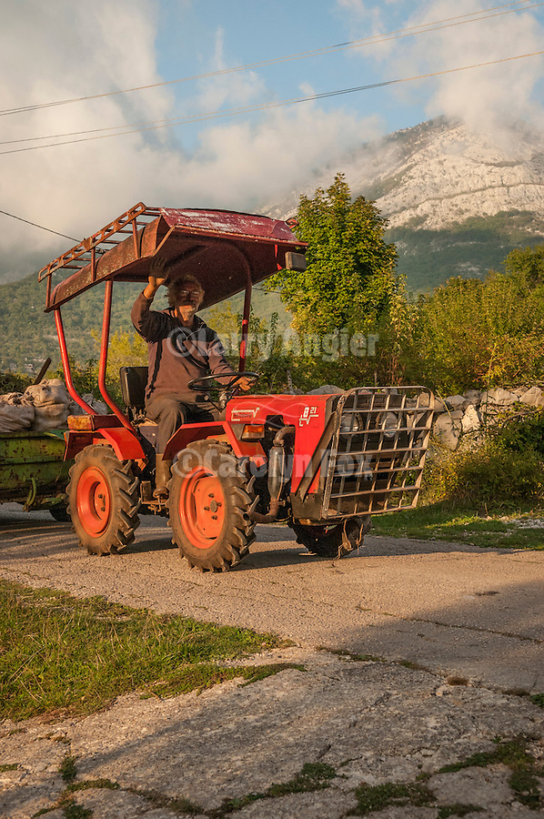 Old man on a tractor near Orjen Mountain, Montenegro