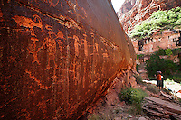 Hikers examine a panel of petroglyphs along the Paria River in northern Arizona.