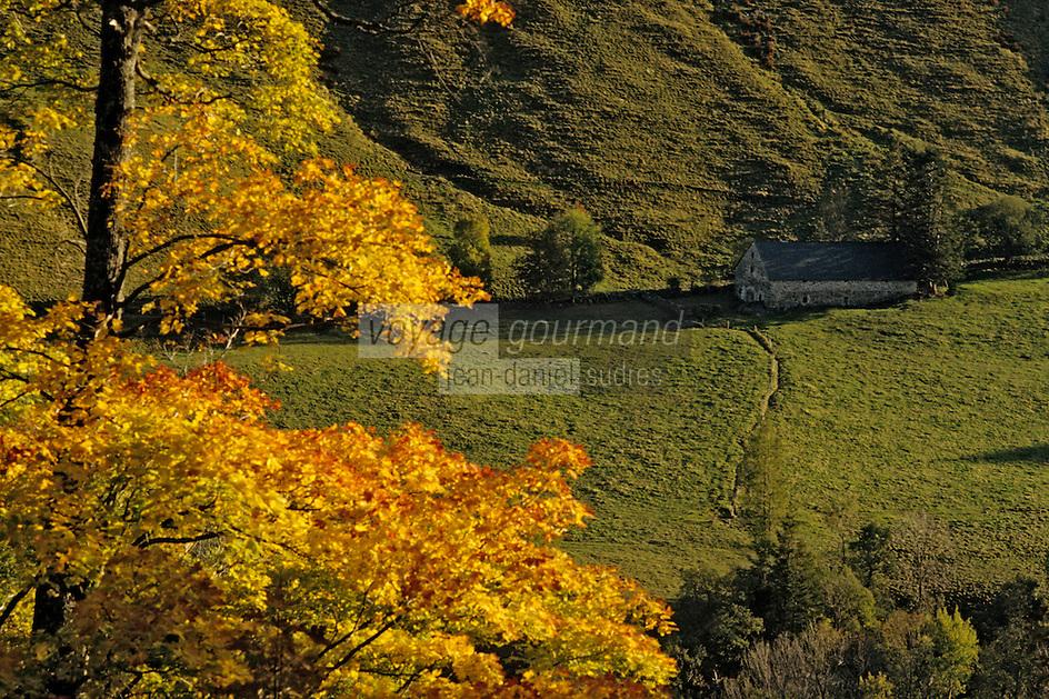 Europe/France/Auvergne/15/Cantal/Parc Régional des Volcans/Massif du Puy Mary (1787 mètres): La vallée de Dienne et buron