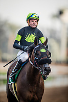 ARCADIA, CA - DECEMBER 26: Bowies Hero #5 with Kent Desormeaux gallops back after winning the Mathis Brothers Mile at Santa Anita Park on December 26, 2017 in Arcadia, California. (Photo by Alex Evers/Eclipse Sportswire/Getty Images)