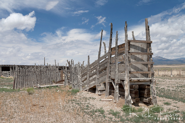 Cattle loading chute in eastern Nevada.