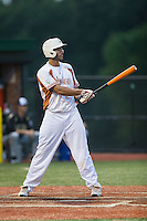 Damian Rutherford (19) of the Asheboro Copperheads at bat against the Gastonia Grizzlies at McCrary Park on June 1, 2015 in Asheboro, North Carolina.  The Copperheads defeated the Grizzlies 11-6. (Brian Westerholt/Four Seam Images)