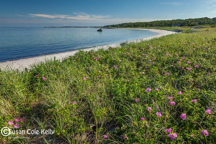 Little Island Beach in Falmouth, Cape Cod, Massachusetts, USA