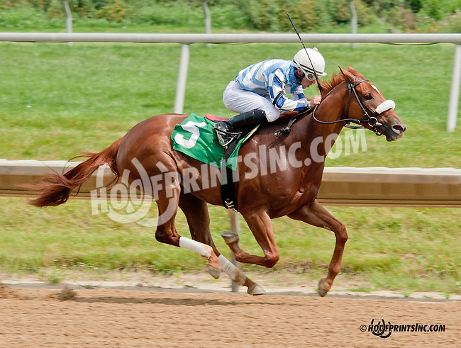 Apologize winning at Delaware Park on 6/26/13