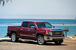 Sierra truck with ocean and gull in the background