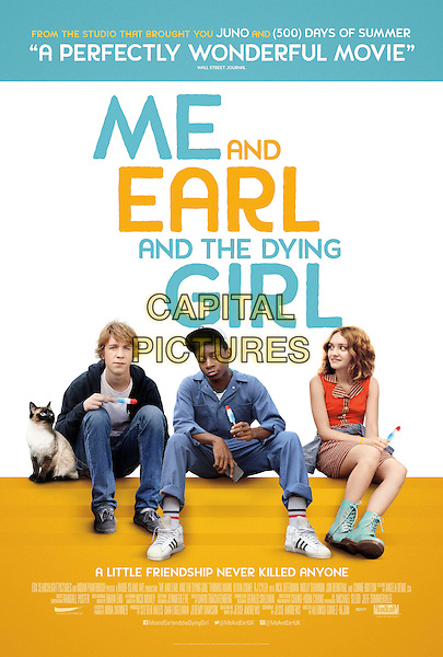 POSTER ART<br /> in Me and Earl and the Dying Girl (2015) <br /> *Filmstill - Editorial Use Only*<br /> CAP/NFS<br /> Image supplied by Capital Pictures
