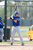 Team Italy first baseman Leonardo Seminati (30) at bat during an exhibition game against the Oakland Athletics at Lew Wolff Training Complex on October 3, 2018 in Mesa, Arizona. (Zachary Lucy/Four Seam Images)