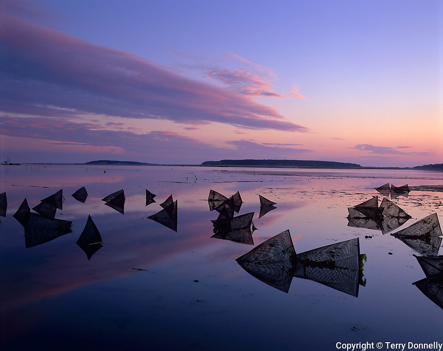 Wellfleet, Cape Cod, MA<br /> Sunset reflections on Wellfleet Harbor with silhouetted patterns of oyster condos (or cages) exposed at low tide
