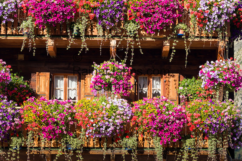 Switzerland, Canton Valais, Evolène - district Arolla: summer and winter resort at the end of the Val d'Hérens - Hotel du Glacier at village centre, balcony with opulent flower arrangements | Schweiz, Kanton Wallis, Evolène - Ortsteil Arolla: Sommer- und Winterferienort im oberen Talabschluss des Val d'Hérens (Eringertal), Hotel du Glacier im Ortszentrum - Balkon mit ueppigem Blumenschmuck (Detail)