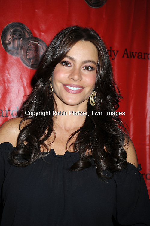 Sofia Vergara posing for photographers at 69th Annual Peabody Awards on May 17, 2010 at The Waldorf Astoria Hotel in New York City.